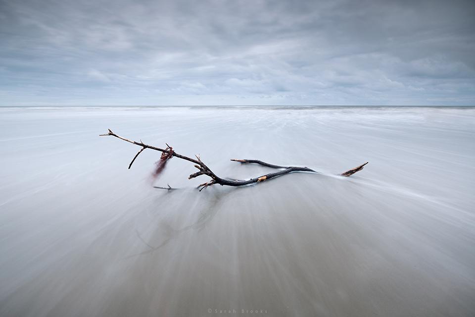 Seascapes - Sarah Brooks